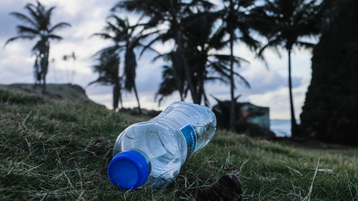 plastic_bottle_litter